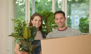 Μεταφορά και μετακόμιση φυτών