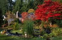 Πώς φωτογραφίζουμε λουλούδια και κήπους