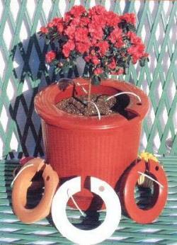 Πώς θα ποτίζονται τα φυτά του σπιτιού σας όταν λείπετε σε διακοπές