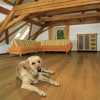 Πώς θα φροντίζετε τα ξύλινα πατώματα