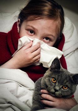 Αλλεργικοί στις γάτες; Όχι πια, χάρη στην βιοτεχνολογία!