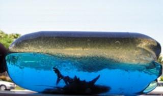 Ωκεανός σε μπουκάλι, χειροτεχνία για παιδιά