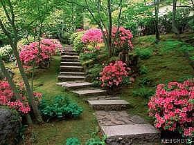 Σχεδιάζοντας έναν Feng Shui κήπο.