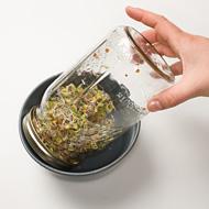 Καλλιεργήστε φύτρα