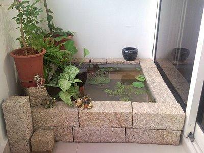 Δημιουργήσετε μια λίμνη με υδρόβια φυτά σε εσωτερικό χώρο