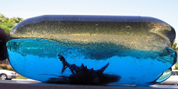 Ωκεανός σε μπουκάλι, κατασκευή για παιδιά.