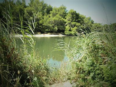 Η λίμνη Στροφυλία, προστατευόμενος υδροβιότοπος