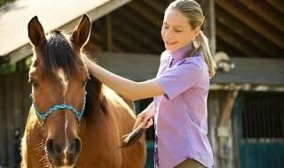 Συμβουλές για την φροντίδα του αλόγου