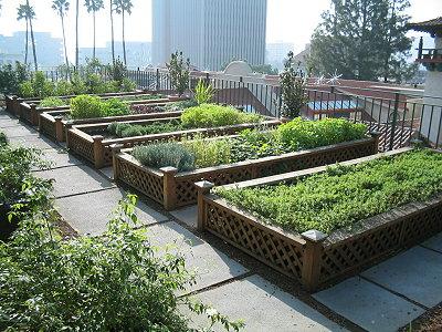 Κηπουρική σε παρτέρια