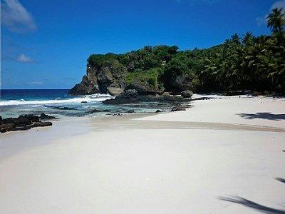 Η παραλία με τους φοίνικες Dolly Beach