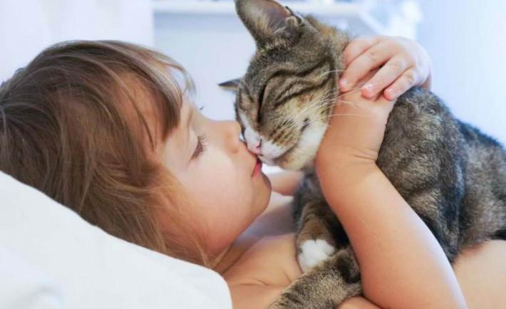 Σε αγαπάει η γάτα σου; Αν ναι, πώς σου το δείχνει;