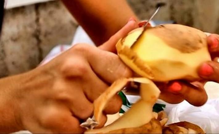 Πατάτα: Μία τροφή, χίλιες παραλλαγές και πολλές συνταγές