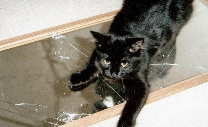 Προλήψεις. Ποιος φοβάται τη μαύρη γάτα;