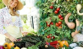 Πώς να καλλιεργήσετε εξωτικά λαχανικά