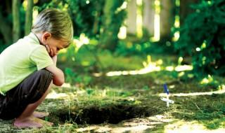Βοηθήστε τα παιδιά να αντιμετωπίσουν την απώλεια του κατοικιδίου τους