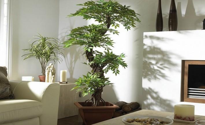 Πώς να διακοσμήσετε το σπίτι σας με τεχνητά φυτά