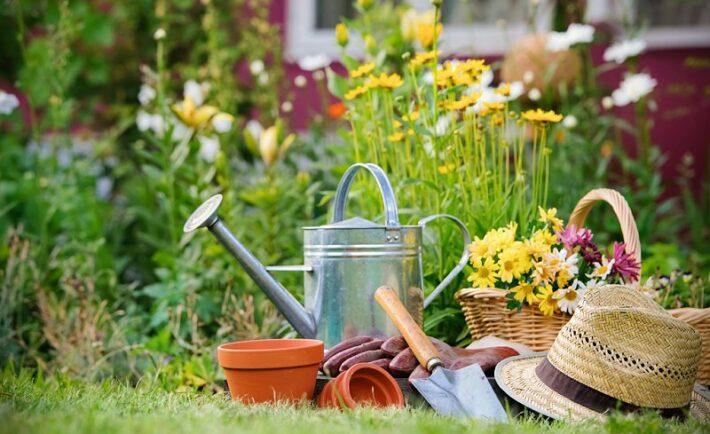 Ανακαλύψτε τις χαρές της κηπουρικής
