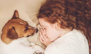 Το παιδί κοιμάται με τον σκύλο – Πειράζει;